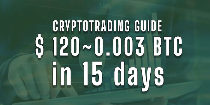 Crypto trading guide how to make profit